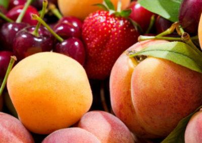 GAEC DES 3 CHÊNES – CROQUE FRUITS – AB